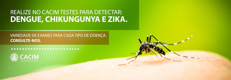 Teste Dengue